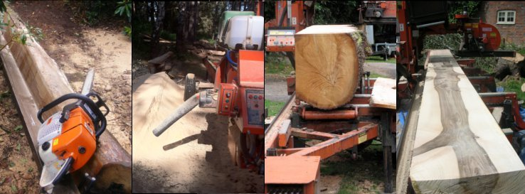 Mutiple Views of Sawmilling